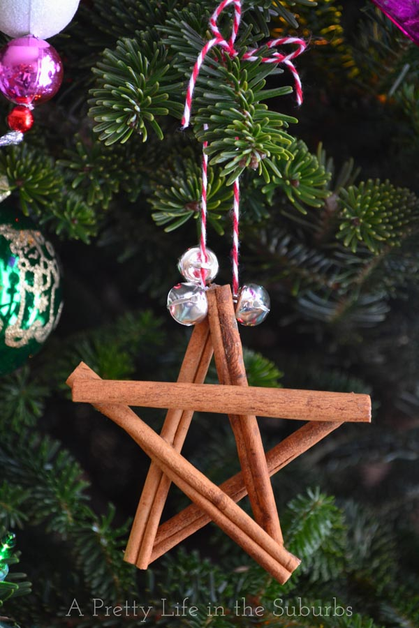 Cinnamon-Star-Ornament11