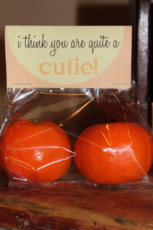 I-think-you-are-quite-a-cutie-25-Creative-Classroom-Valentines-NoBiggie.net_-500x750